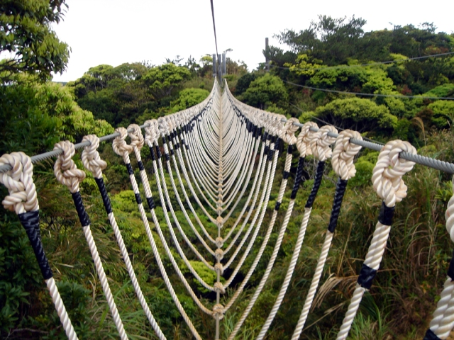 Rope_Bridge_1_by_EE_Stock