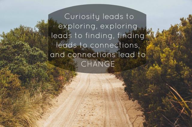 curiosityquote